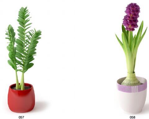 (EV模型库)Archmodels vol. 66 室内植物