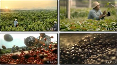 泰国雀巢咖啡广告短片